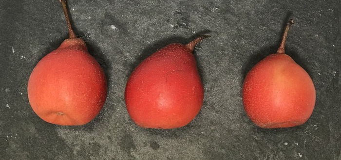 Say 'Piqa Boo' To New Super Pears.