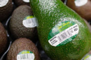 Everything You Avo Wanted! Asda Launches Giant Avocados.