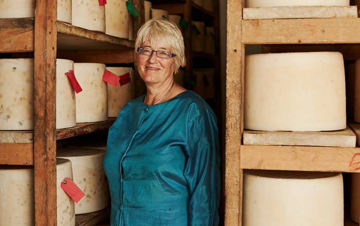 Clothbound Cheddar Stars At Great Taste, As Quicke's Lands Five Awards.