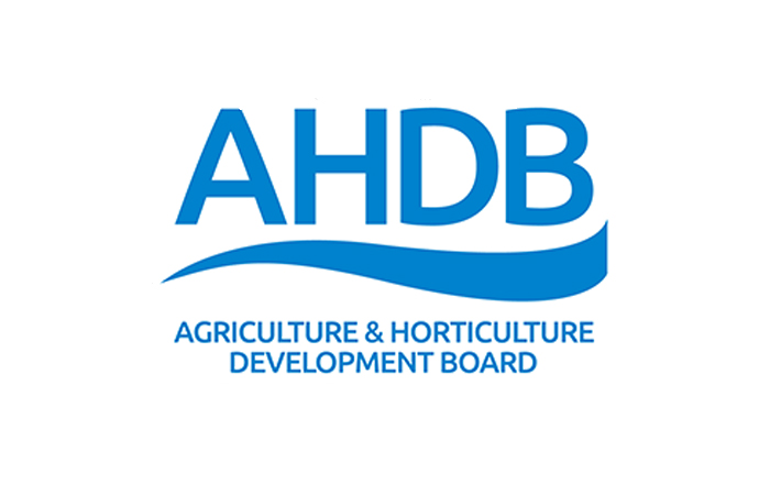 New Head Of Potato Exports Joins AHDB.