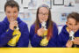 McCain Partners With AHDB On Britain's Most Popular Schools Growing Project.