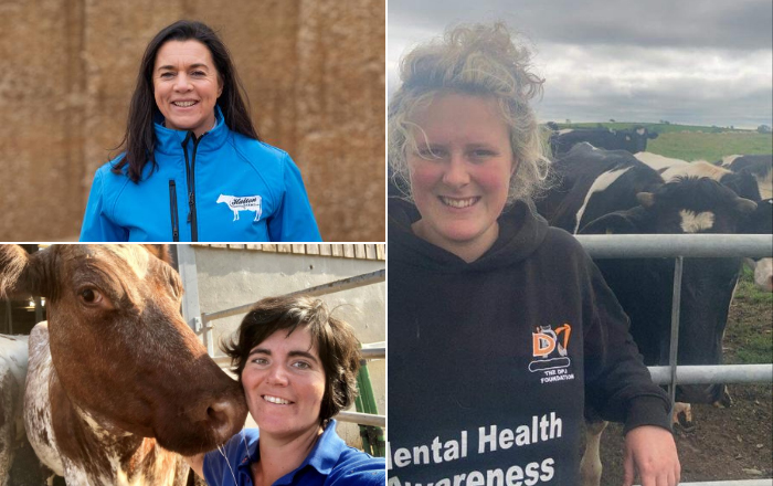 Three outstanding finalists selected for Dairy Industry ...